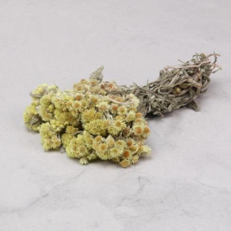 Anaphalis seca amarilla