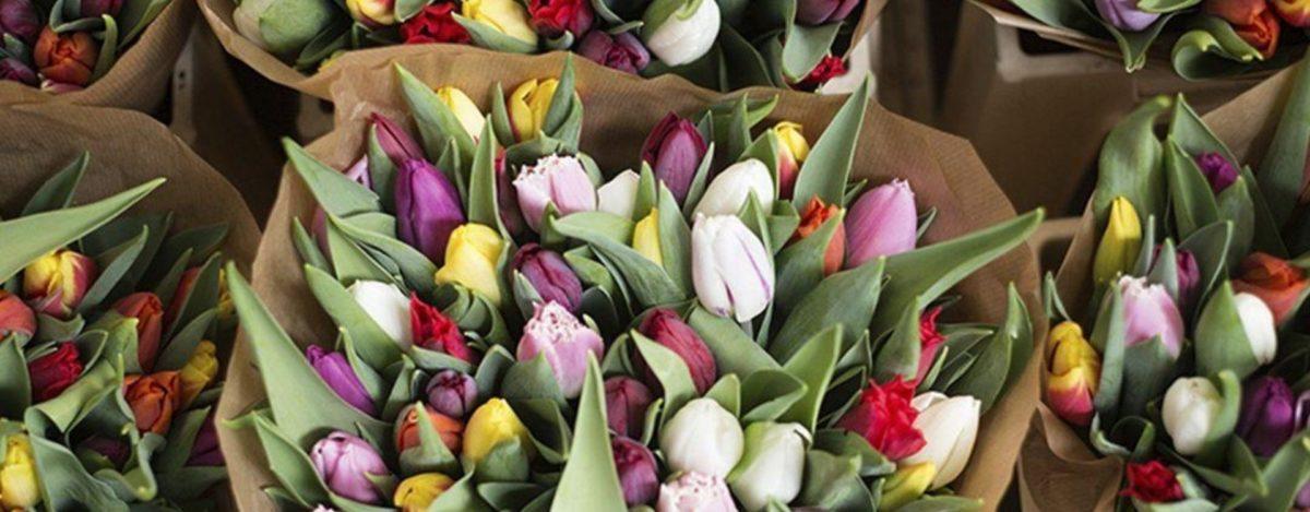 Por qué regalar flores es una buena opción